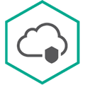 Cloud Endpoint Security